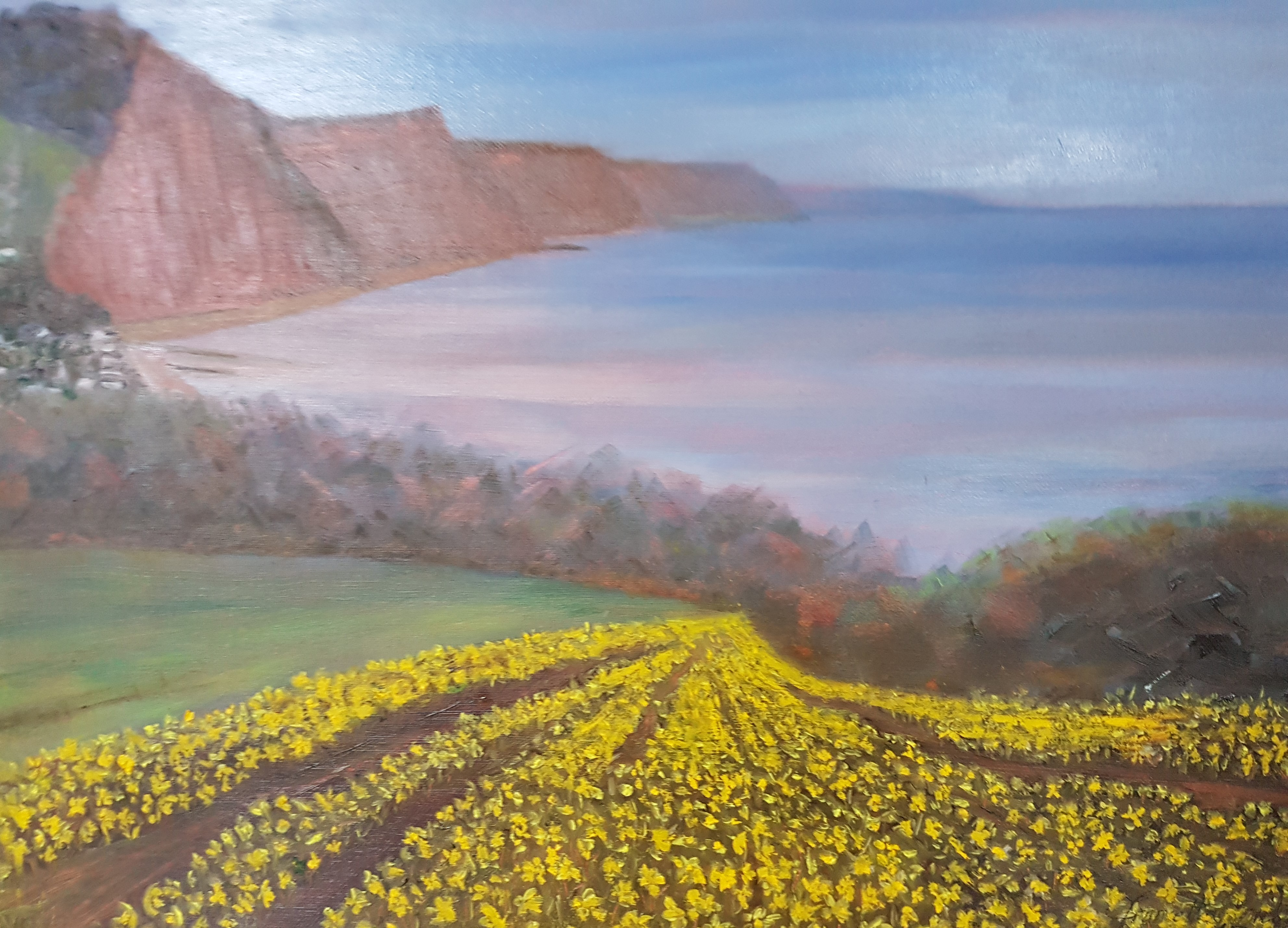 Francetta bridle. daffodils at sidmouth