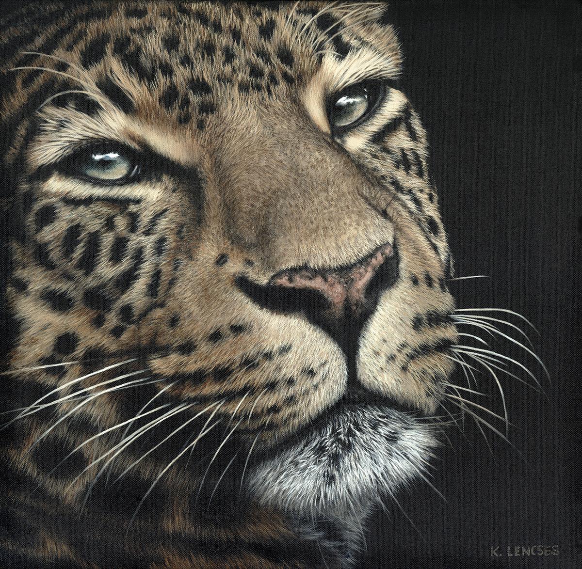 Lencses   leona  the african leopard