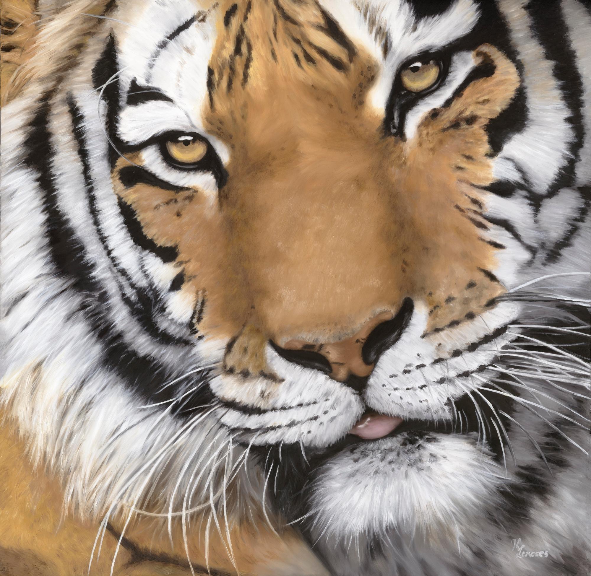Lencses   tiger