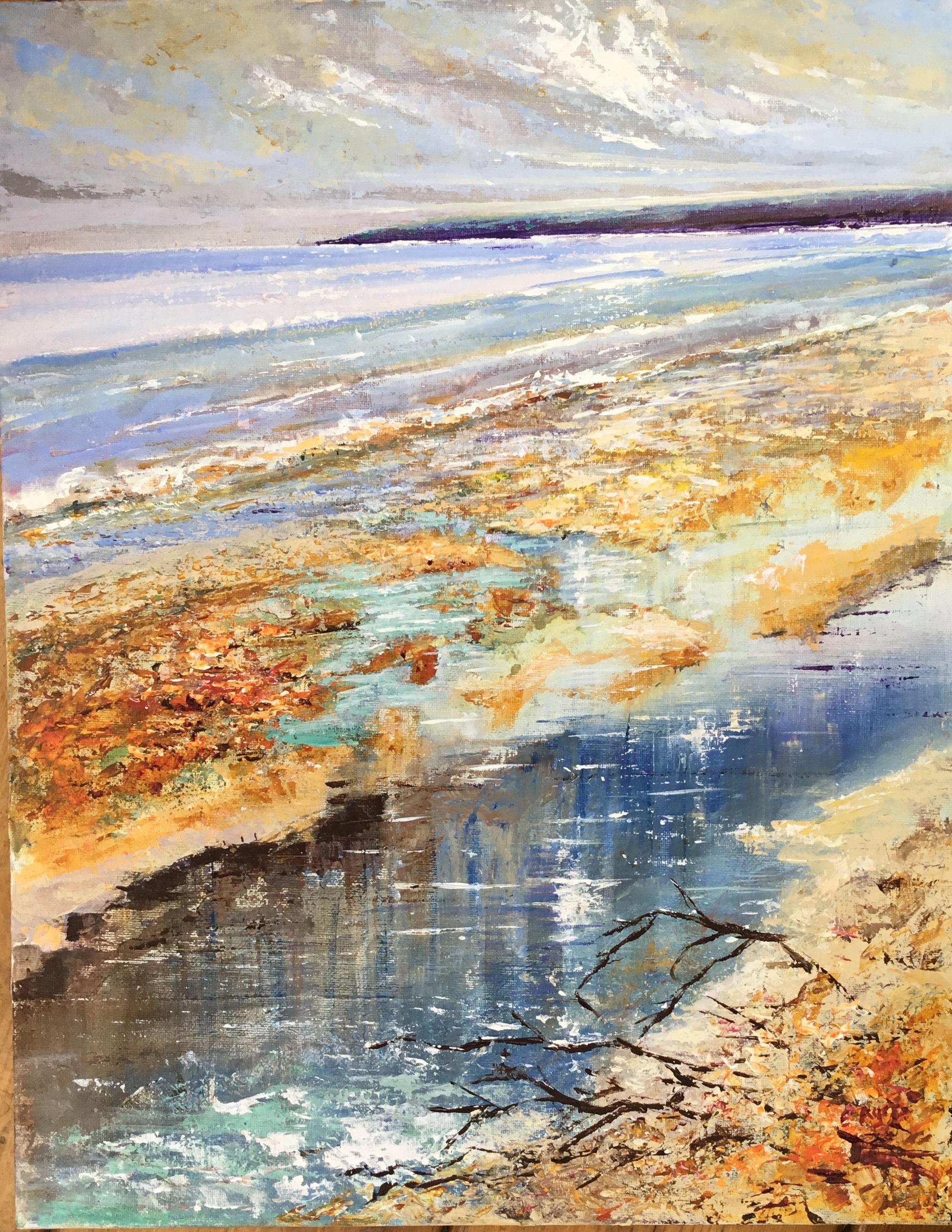 Tidal pool  exe estuary sept 2018